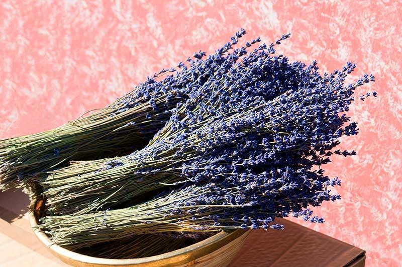 Lavendelblüten-Strauss