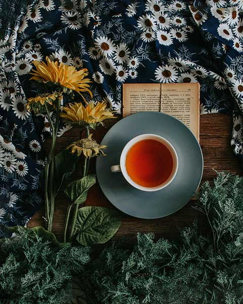 Tee für die Frühlingskur