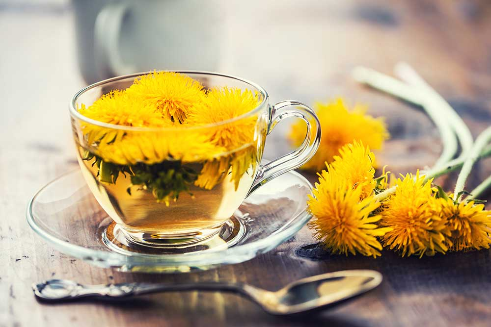 Löwenzahn Tee