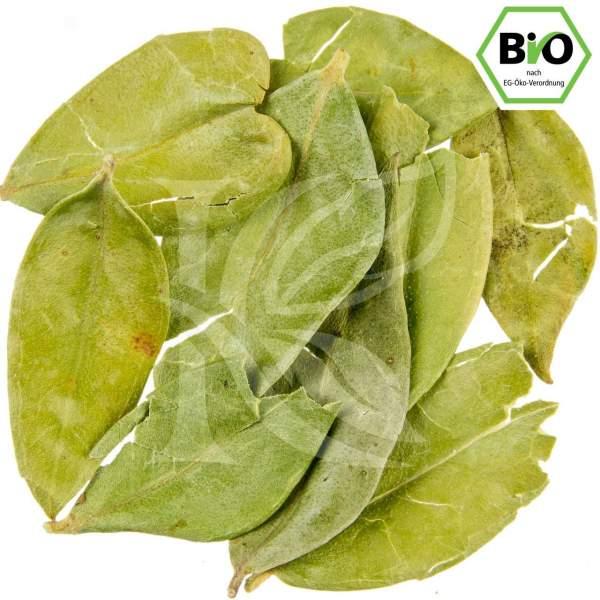 Bio Myrtenblätter kaufen