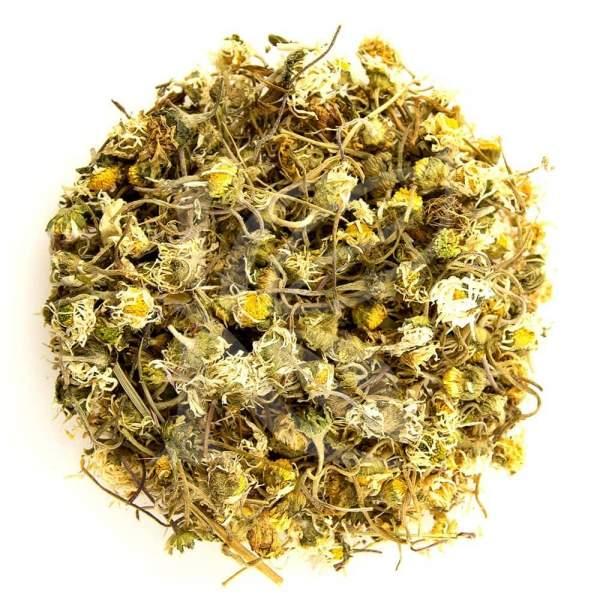 Gänseblümchen für den Tee kaufen