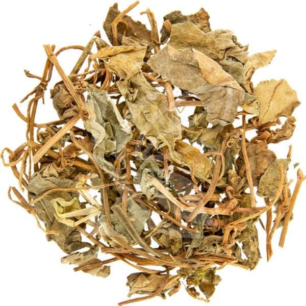 Gilbweiderichkraut, gold coin - getrocknet als Tee