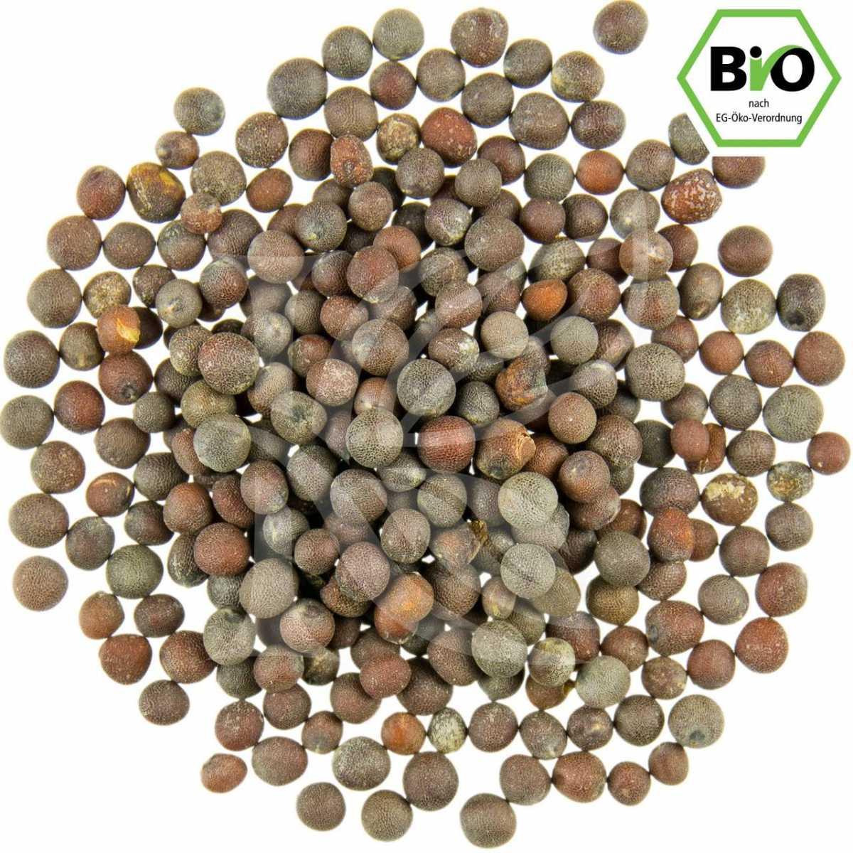 braune Senfkörner, Bio in unserem Onlineshop kaufen